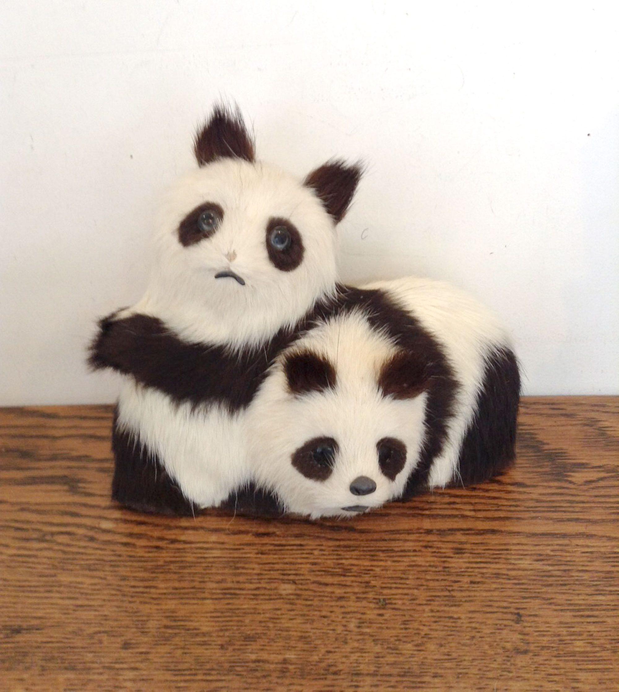 骨董パンダ
